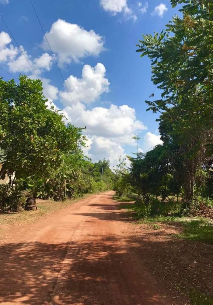 issan rum - walk to distillery